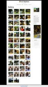Gallery - G.P Mabasa screen